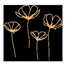 Flower Line Drawing Illustration Rumu Creative